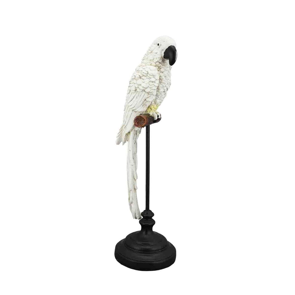 White Cockatoo on Stand