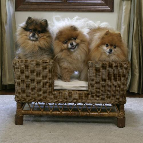 Rattan Dog Basket