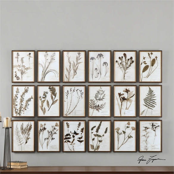 Set of Framed Botanicals