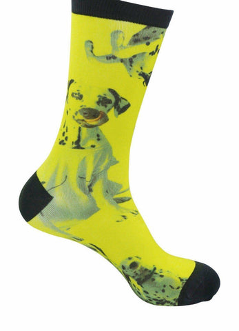 Image of Dalmatian socks Bamboo Socks - Stock Socks Official funky socks