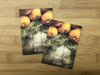 Fall Pumpkin Wood Seed Packets