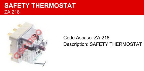 Saeco Thermostat
