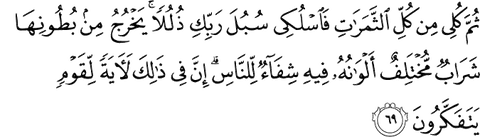 Quran 16 69 about honey