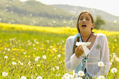 How to change your life by treating the causes of your hayfever