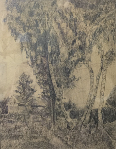 Signed Pencil Sketch of Trees