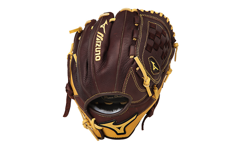 Mizuno Franchise Glove
