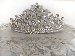 Bridal Tiara with Crystal Vines