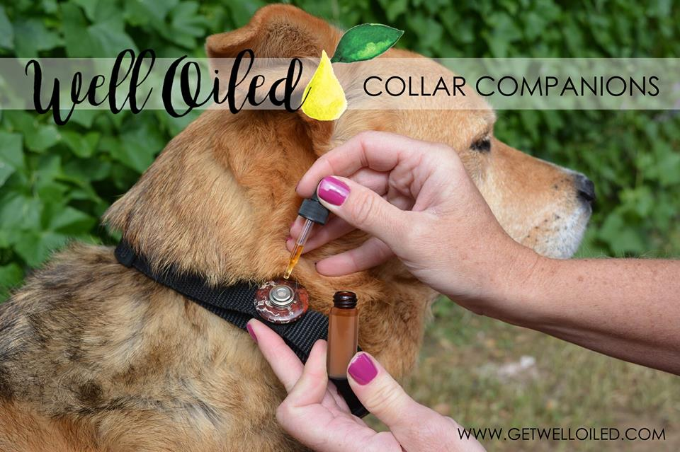 Collar Companion Pet Diffuser