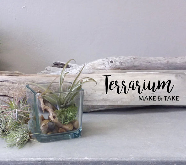 DIY Class - Terrarium Workshop (March 17)