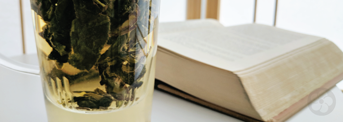 Tea and Books: The Greatest Chinese Novel You've Never Heard Of