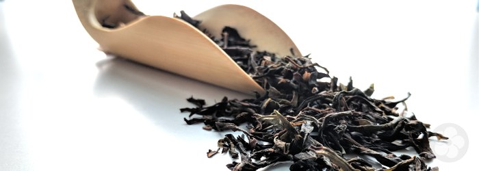 Defining High Quality: What Makes a Good Tea?