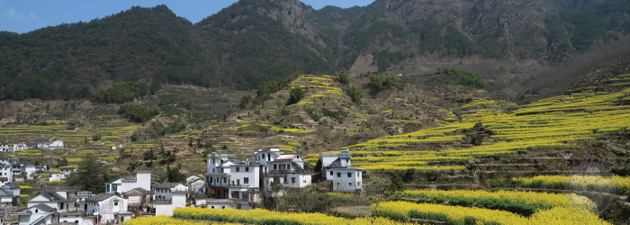 This village in green tea country looks plucked from history