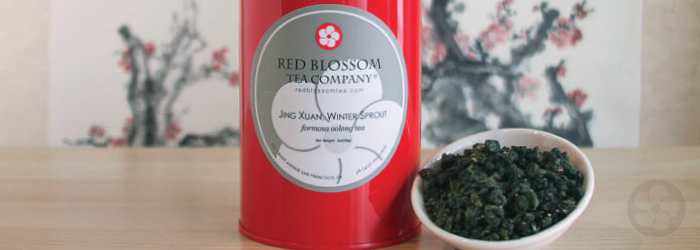 jin xuan, winter sprout is a formosa oolong with naturally sweet flavor