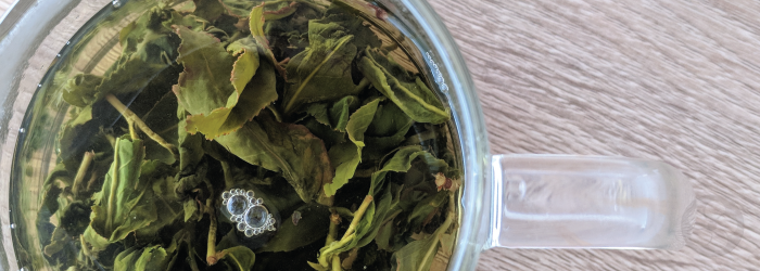 tea leaves left to steep for too long often become bitter