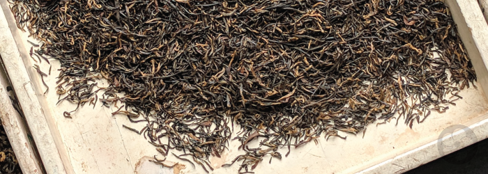 broken leaves are a middle grade of tea, with flavor depending on harvest date and terroir.