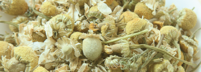 Chamomile is often recommended as a natural sleep aid