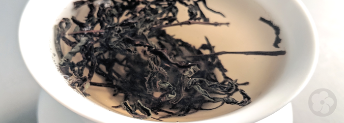 This twisted oolong from Guangdong is well known for its distinctive flavor profile