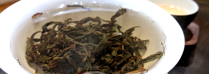phoenix oolong teas are often bred for natural floral or fruity fragrances