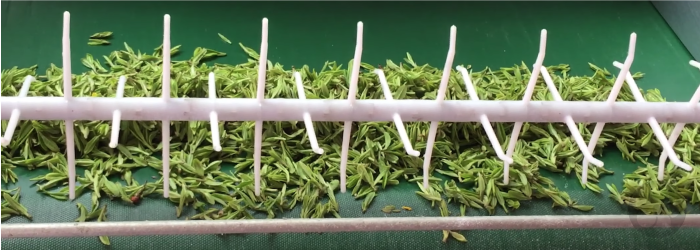Machines designed specifically for crafting Dragonwell tea make the process more efficient and consistent.