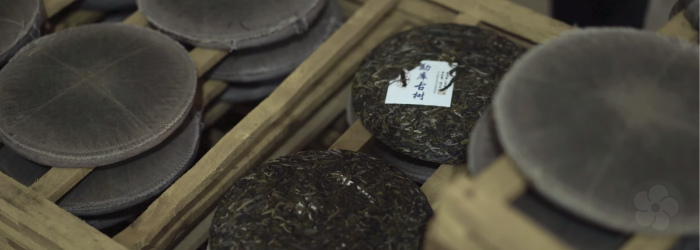 The storage environment of pu-erh tea has a huge impact on the finished flavor of the aged tea