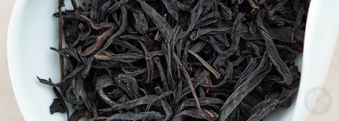 Dry tea leaves of the Mi Lan Xiang variety, bred to cultivate specific fruity and floral flavors