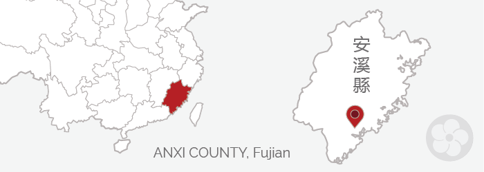 anxi county in fujian province is where tieguanyin teas are produced.