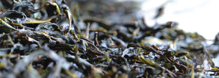 oolong teas are partially oxidized, or browned.