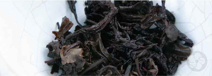 wet pu-erh leaves display color variation, which indicates slower aging