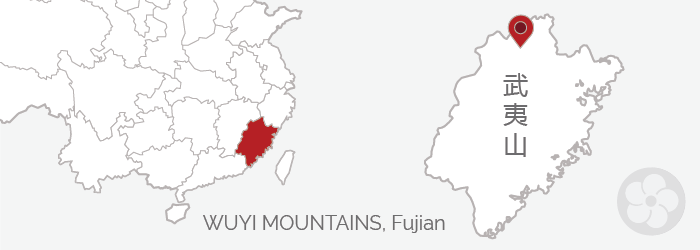 the Wuyi Mountains are one of the oldest tea producing regions in China