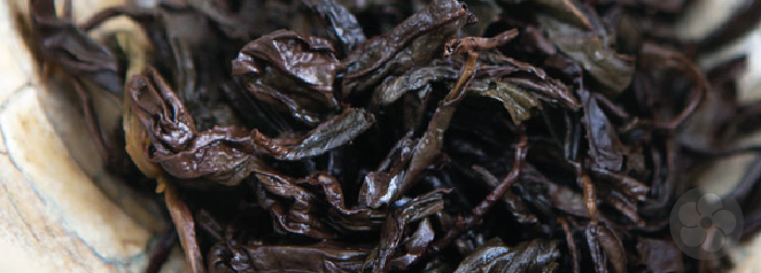wet leaves of a wuyi oolong show their long, twisted shape unfurling.