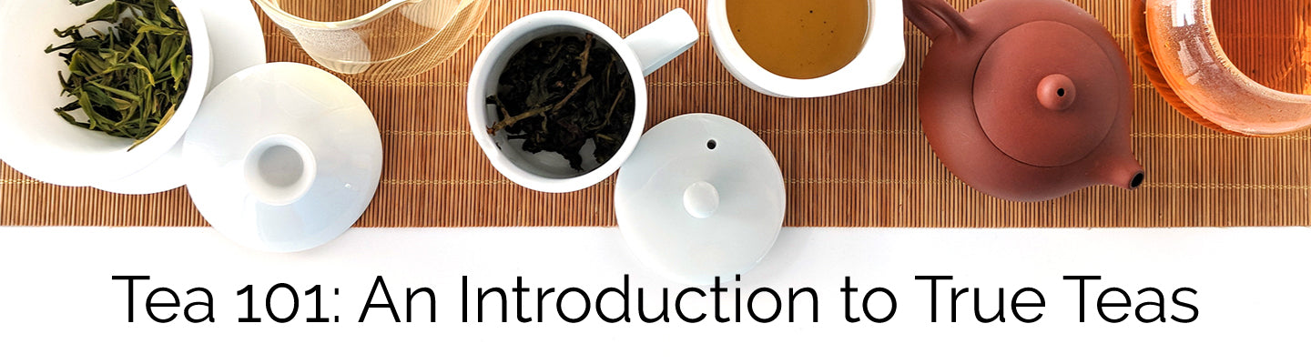 Tea 101: An Introduction to True Teas