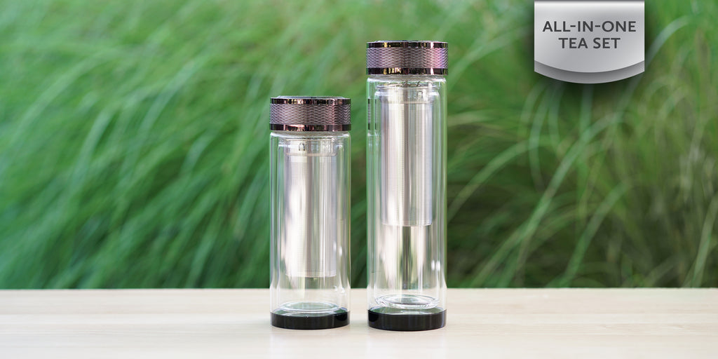 Double Walled Glass Thermos
