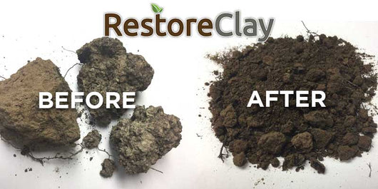 improve clay lawn and garden soils with restoreclay