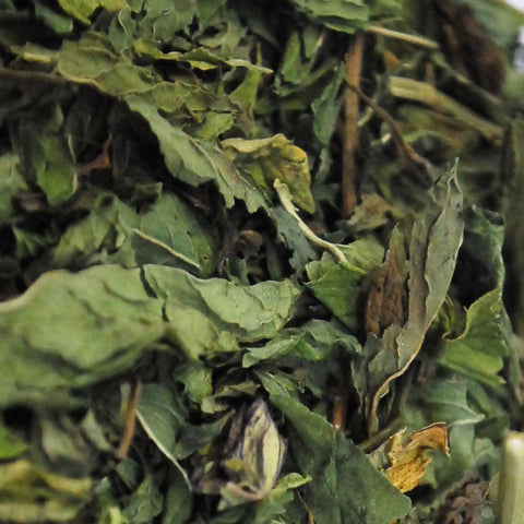 Dried Mint Lebanon