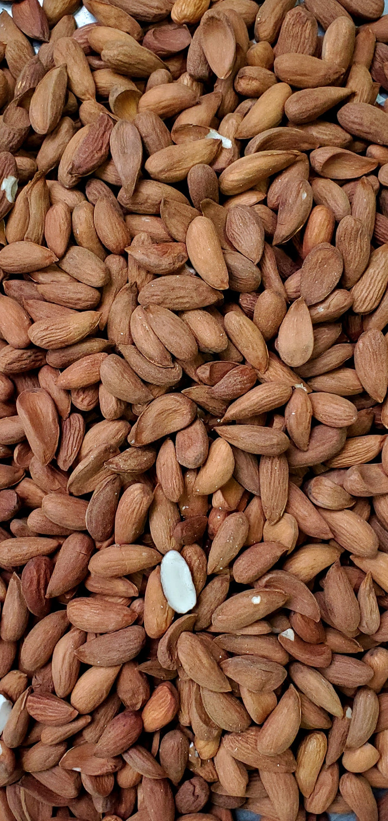 Almonds Heirloom from Kandahar 1lb
