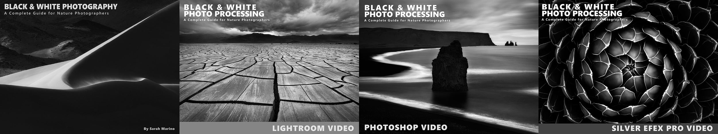 Black and White Course Module Covers