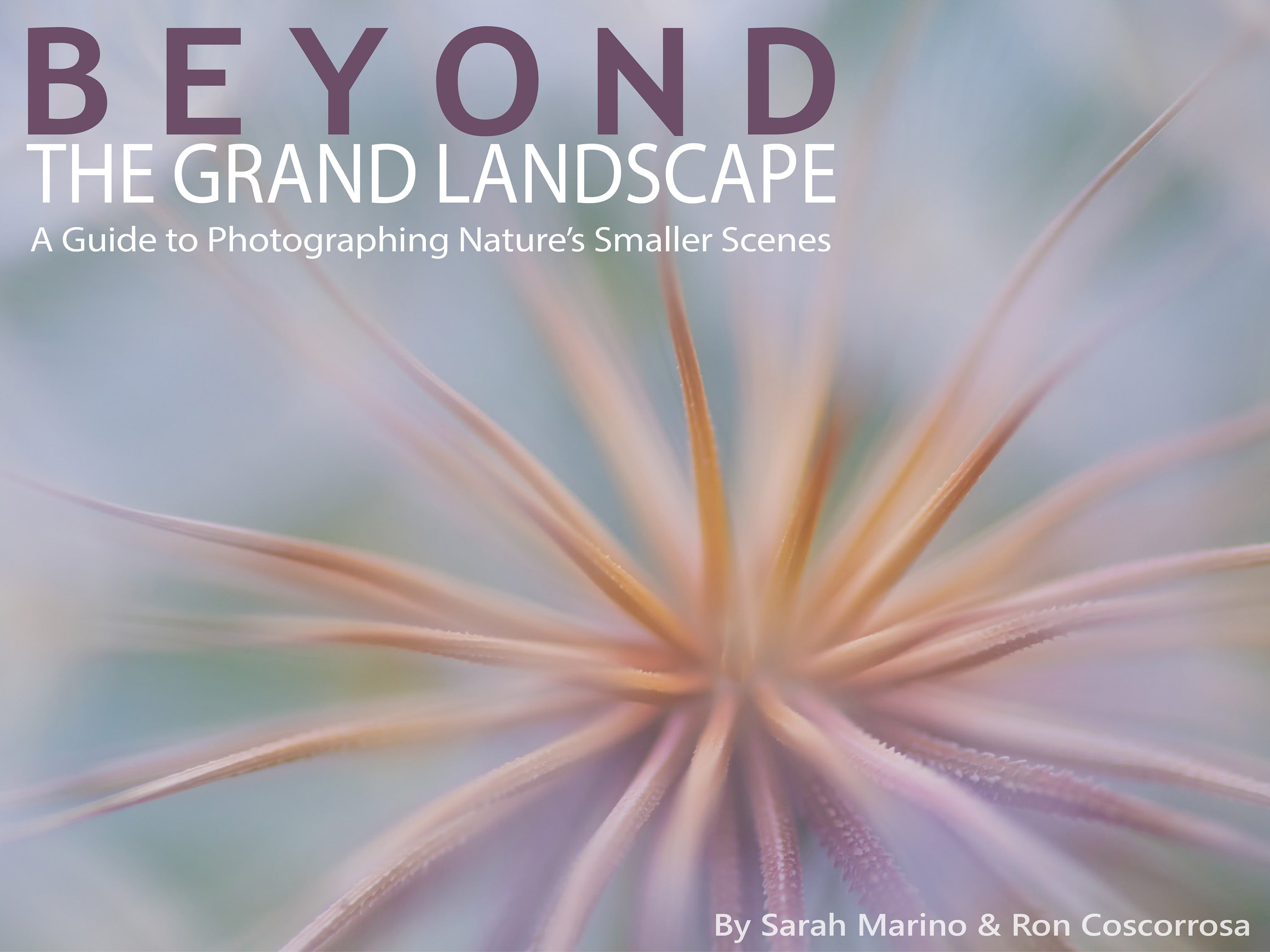 Beyond the Grand Landscape Ebook Cover
