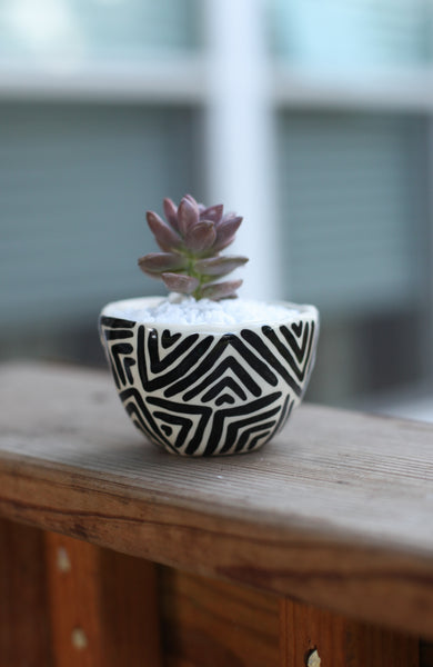 Mini Black and White- Black Zig-Zag