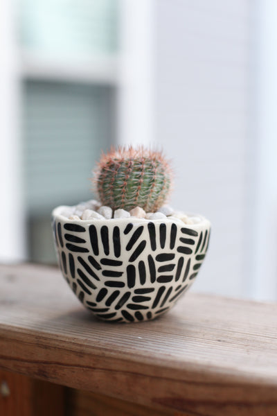Classic Planter - Painted Black Dashes