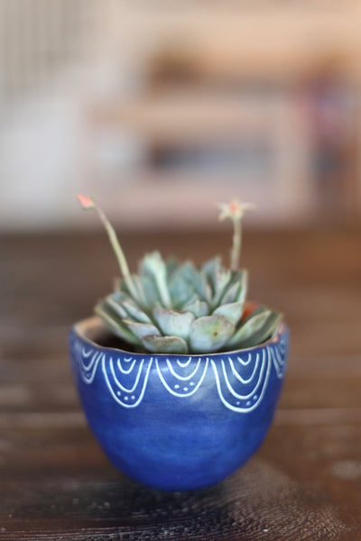 Medium Planter- Blue carved semi-circles