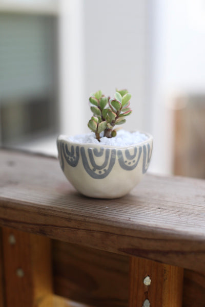 Mini Planter- Grey semi-circles