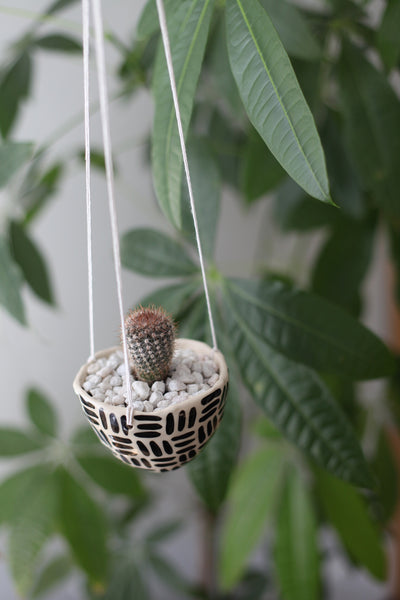 Hanging Planter- Black Dashes