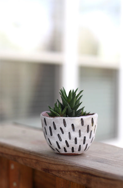 Mini planter- Red stoneware dashes