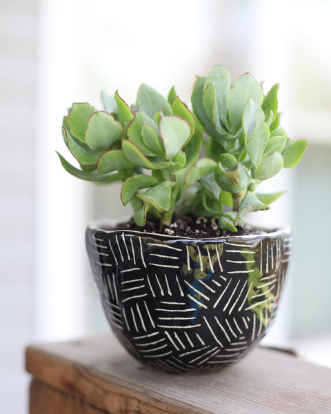 Large Black Planter- carved pattern