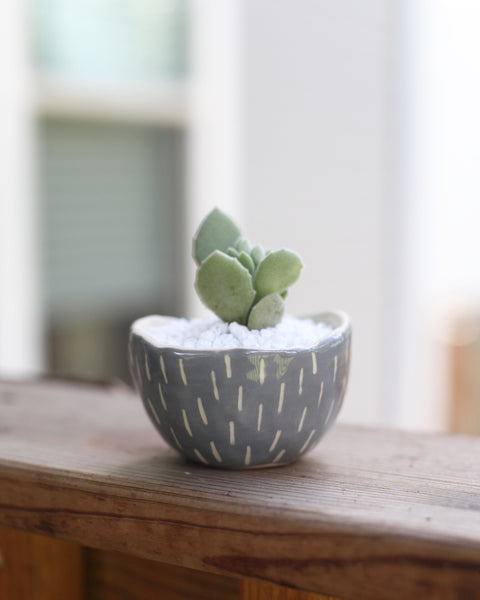 Mini Planter- grey carved dashes