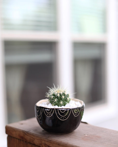 Classic Planter - Black Carved Semi-Circles