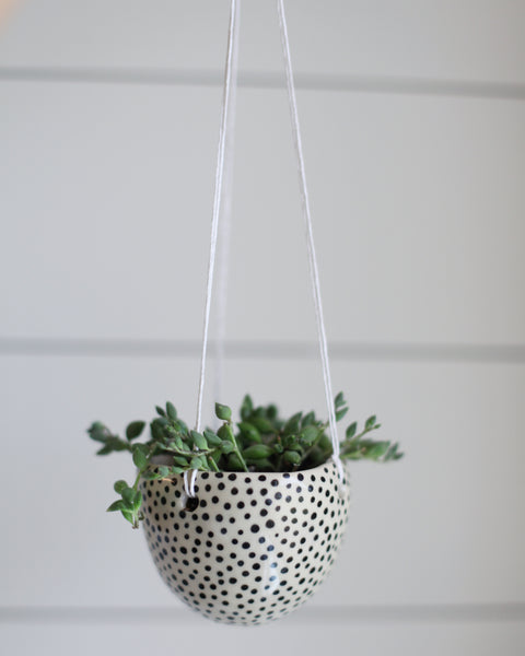 Hanging Planter- Dotted