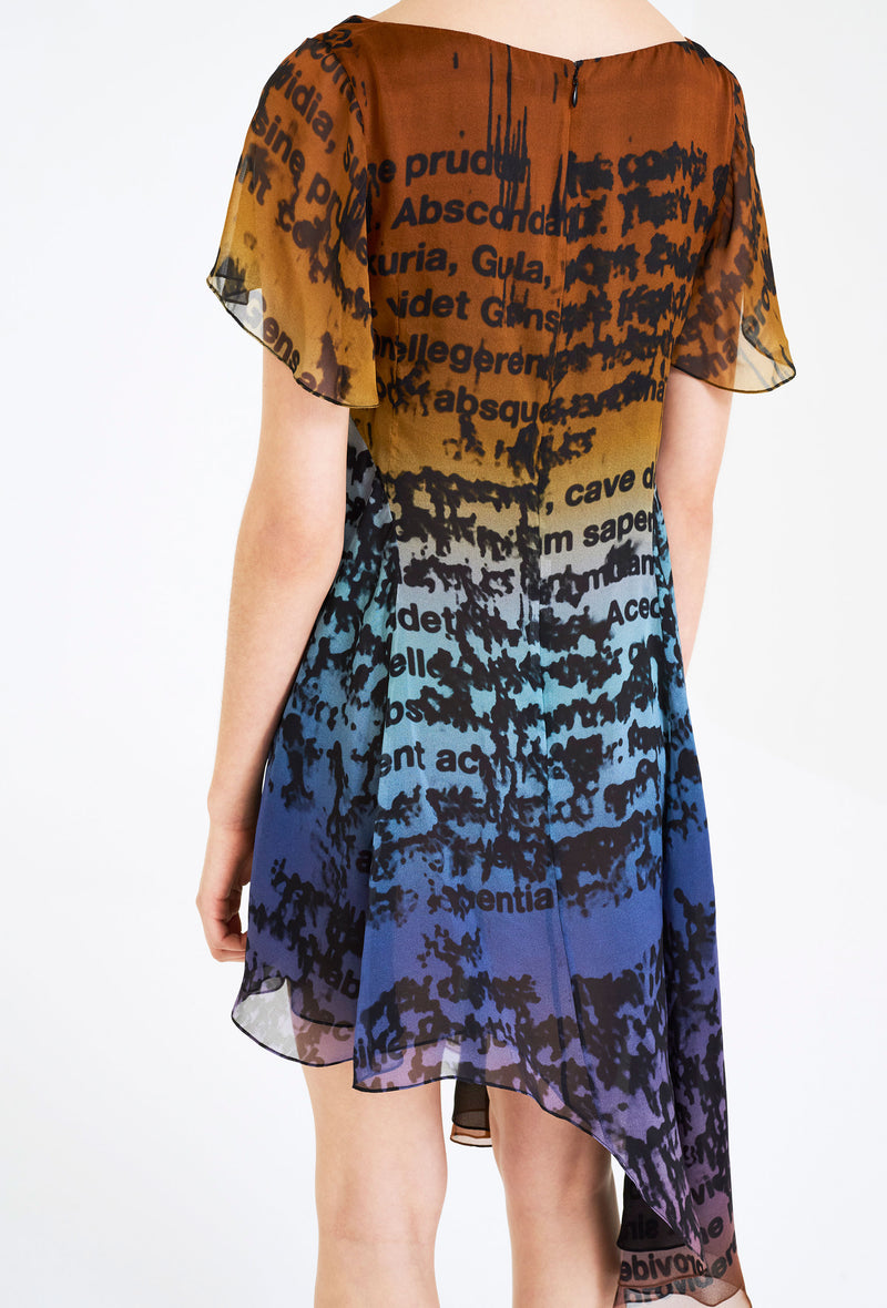 A-Symmetrical Chiffon Dress