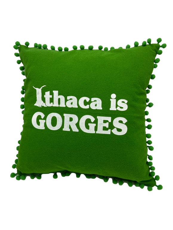 Ithaca Is Gorges 14x14 Pillow