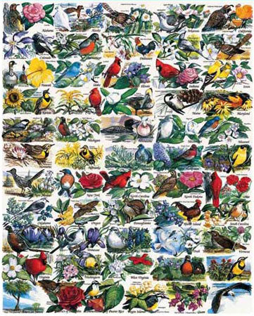 State Birds & Flowers Jigsaw Puzzle